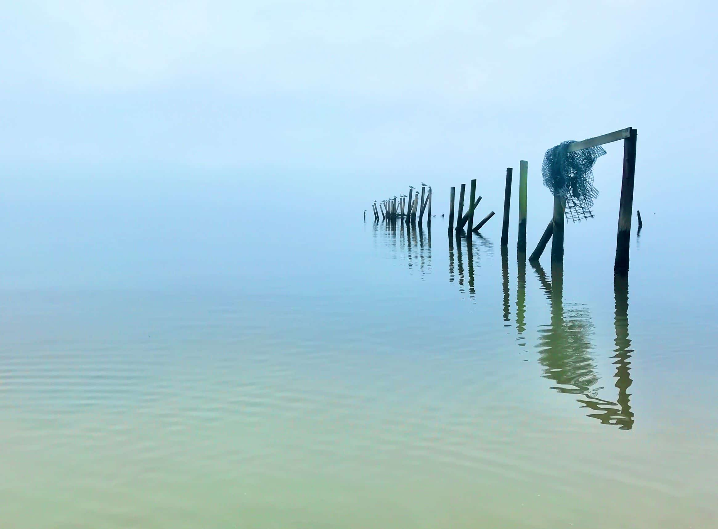 The fog settles on Mobile Bay, allowing me to see only what's in front of me.